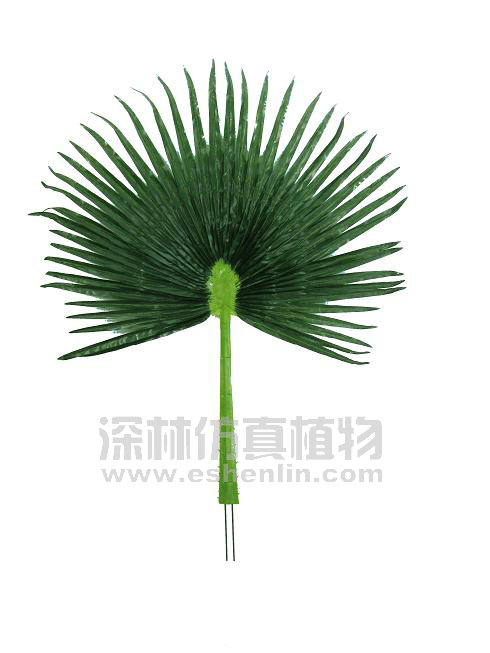 叶类 葵叶 > 棕榈树叶  商品编号:s95401 浏览次数:2961 上架时间:201